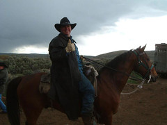 horsedrive2003008