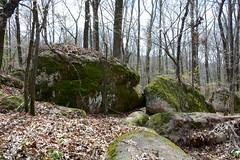 Granite Boulders (Eric Hunt.) Tags: park forest moss spring boulder granite gillampark arkansasauduboncenter