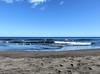 096 | Playa de Las Gaviotas (Mark & Naomi Iliff) Tags: sea españa black beach blacksand islands spain sand canarias espana tenerife naturist canary canaries islas playadelasgaviotas