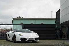 Lamborghini Gallardo LP550-2 Bicolore (Andre.Siloto) Tags: worldcars brasilemimagens
