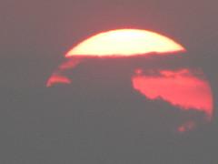 hula hoop sat 084 (Learn, Love, Conserve) Tags: hulahoop saprissa puntaleona feriaverdearanjuez