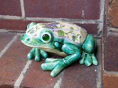 Gingie - Frogs for Yarngoddess (stitchingbushwalker) Tags: opengardens gingie yarngoddess