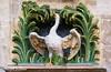 Pride (Francesco Cucinotta) Tags: brussels swan belgique belgie bruxelles brüssel brussel schwan grotemarkt belgien belgio grandeplace cigno regionbrüsselhauptstadt