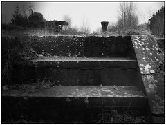 The Last Steps (Look_More) Tags: winter water monochrome landscape effects canal seasons belgium cloudy places hainaut
