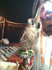 IMG_8490 (ramiint) Tags: tourism riyadh  sttim