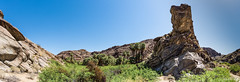 Indian Canyons (Grempz) Tags: palmsprings panoramic palmcanyon indiancanyons 7020028gii nikond610