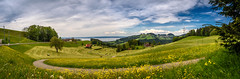 Sunday Walk Panorama (hploeckl) Tags: lake switzerland countryside spring pano bodensee stgallen constance 24mmf28