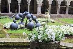 Temps de flors (mireiarovira05) Tags: espaa white spain catalonia girona catalunya catalua gerona espanya tempsdeflors florblanca claustredegirona