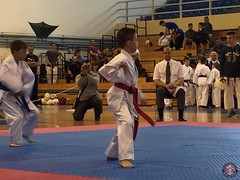 stefanou_15_5_2016_knockdown_118