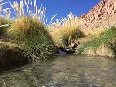 - 2016-05-12 at 15-16-14 + hot water springs