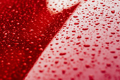 Water Drops On Car Paint (SplitShire) Tags: auto red abstract color reflection texture nature wet water car rain weather metal closeup reflex cool rust shiny waterdrop paint image crystal metallic background smooth surface drop clean drip fluid rainy droplet vehicle backdrop transparent curve shape pour effect liquid sparse textured splashing