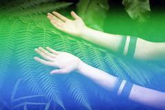 film (La fille renne) Tags: blue plants green film nature tattoo analog ink 35mm model colorful arms body grain faceless ferns canonae1program sirena 50mmf18 lafillerenne helloimwild alterlogue alterloguesirena