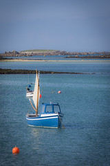 20160616-7D2L6775 (ndall) Tags: scilly tresco