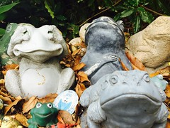 Along the frog wall (C'Anna) Tags: santabarbara stone frogs walls 2016