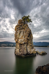 Heron's Outpost, Siwash Rock, Vancouver, BC (PIERRE LECLERC PHOTO) Tags: city sea sky urban canada bird heron water vancouver clouds landscape island britishcolumbia wildlife stanleypark northvancouver blueheron siwashrock seastack pierreleclercphotography canon5dsr