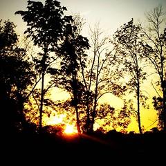 Country sunset (LaLa83) Tags: sunset ohio square backyard dusk lofi squareformat fairfieldcounty ruralohio ohiofoothills iphoneography stoustville instagramapp uploaded:by=instagram