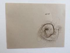 Dibujo orgnico (lauramurillom) Tags: disegno drawing dessin dibujo pelo hair