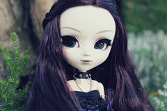 Queen (HelloLittleBerry) Tags: portrait cold color canon photography eos doll dolls velvet queen plastic midnight groove pullip pullips pullipdoll obitsu 1300d