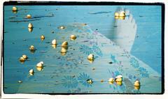 JUST GO WITH THE SEASON (poppycocqu) Tags: flowers blue sea summer shells beach floral fleur june outside foot sand flora toes poetry poem dress bubbles polish nails shore ap poppy nailpolish nailvarnish jasonmraz prose imyours appoppy createthefutureyouwanttoface justgowiththeseason