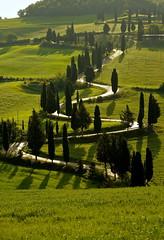 Monticchiello , Toscane (jean-marc losey) Tags: primavera spring italia vert toscana toscane printemps zigzag italie cyprs monticchiello d700