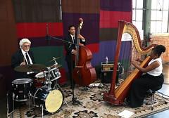 Destiny Muhammad: Jazz Harp (beppesabatini) Tags: california richmond bayarea artsandcrafts kpfa craftsfair artsfair cranewaypavilion 941kpfa 2ndannualkpfasummerartsfair2016 kpfasummerartsfair