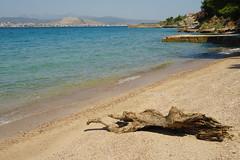 ~ Agios Minas Beach (Argyro...) Tags: wood sea sky seascape beach water seaside sand greece chalcis   agiosminasbeach