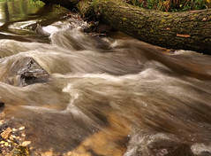 Backwash of Egervíz stream (andraszambo) Tags: egervíz egerpatak backwash water colours lights wave tree hungary tapolca magyarország víz wasser bach white satin silk silky breakwater