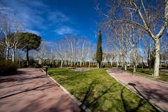 20150305-Parque C.V.O. Madrid-IMG_9962 (jmpe2004) Tags: