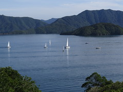 "Picton <a style=""margin-left:10px; font-size:0.8em;"" href=""http://www.flickr.com/photos/83080376@N03/16280451364/"" target=""_blank"">@flickr</a>"