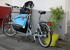 dutch pushbikes (28) (bertknot) Tags: bikes fietsen fiets pushbikes dutchbikes dutchpushbikes