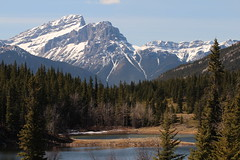 Bow valley provincial park walk around April 2015 (davebloggs007) Tags: park canada river rockies walk alberta valley bow april around provincial 2015