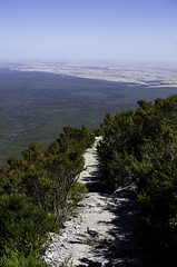 Bluff Knoll hiking path (inefekt69) Tags: trees mountains southwest nature forest nationalpark bush nikon hiking australia trail ranges summit outback range westernaustralia parkland bushland stirlingranges bluffknoll gnowangerup d5100