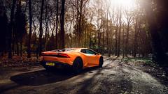 Huracan (domantasm.) Tags: orange holland netherlands car woods shadows sunny huracan automotive 169 lamborghini supercar v10 sportscar