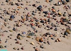 BeachPebblesRevisited (mcshots) Tags: california travel winter usa beach wet colors coast sand rocks shadows stones sandy stock playa pebbles malibu socal beaches mcshots losangelescounty
