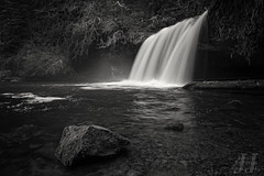 Upper Butte Creek Falls (Joshua Johnston Photography) Tags: blackandwhite nature water oregon waterfall upperbuttecreekfalls canon6d canon24mm28is joshuajohnston