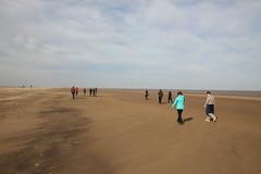 Beach Wandering II