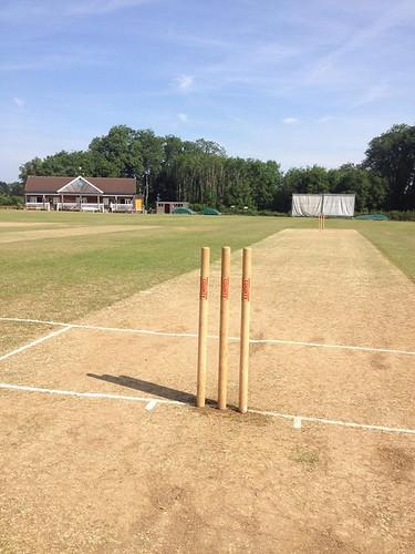 1 Summer wicket