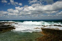 IMG_5609 (PicNic Cards) Tags: ocean waves caves palmtrees caribbean caymanbrac