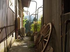 Shimoyama#1 (tetsuo5) Tags: kyoto   shimoyama kyotanbacho  dmcgm5 gvario1232mm