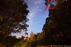 Cradle Mountain SCP Star Trail [Tasmania] - 28 April 2016 (myshutterworld) Tags: nightphotography mountain nightscape south australia pole astrophotography tasmania nightsky wilderness celestial cradle scp startrail lemonthyme milkywaygalaxy