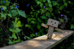 [Danbo] Adventure (lenanu) Tags: danbo danboadventure nikon lenanu 35mm outdoor drausen toy spielzeug emotion gefhl sun sunlight light licht shadow schatten sonne spring summer frhling sommer bokeh schrfentiefe tiefenschrfe green grn nature natur