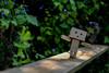 [Danbo] Adventure (lenanu) Tags: danbo danboadventure nikon lenanu 35mm outdoor drausen toy spielzeug emotion gefühl sun sunlight light licht shadow schatten sonne spring summer frühling sommer bokeh schärfentiefe tiefenschärfe green grün nature natur