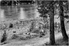 Gi al fiume   Down by the river (Roberto Spagnoli) Tags: blackandwhite sun bicycle river fiume biblioteca sole tanning biancoenero adige abbronzatura 50mmcanon