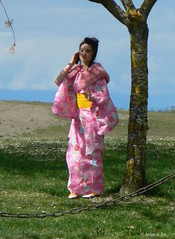 Cherry Pink Kimono    (the mindful fox) Tags: pink cherryblossom kimono steveston  garrypointpark