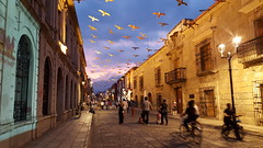 A night in Oaxaca City (Adam_BT) Tags: nightphotography night mexico oaxaca sincity