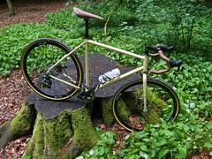 iconX_  20162016-06-1314-47-43 (C_Baltrusch) Tags: olive crossroad crossbones kafue madeofsteel stahlrad veloheld iconx bikespresso
