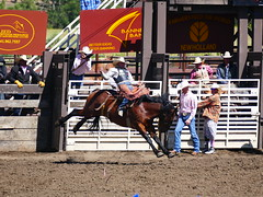 Let Er Buck (Armen Woosley) Tags: oregon eastern saddle bronc 109th livestockshowprcarodeo