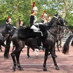 Blues and Royals (NTG's pictures) Tags: the major generals review rehearsal for trooping colour british army household division cavalry blues royals lifeguards london mall