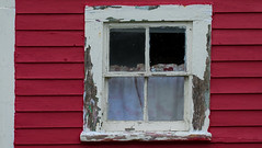 The Old Window (Dolores Harvey) Tags: old red window glass newfoundland wooden curtain redhouse oldhouse peelingpaint oldbuilding cribbies torscove woodenwindow newfoundlandandlabrador inneedofwork theoldwindow canvassingtheneighbourhood canvassingtheneighbourhoodcom canvassingtheneighbourhoodphotography