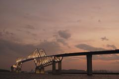 DSC04472 (Zengame) Tags: bridge japan architecture night zeiss tokyo sony illumination landmark illuminated cc jp creativecommons    distagon     wakasu   a6300  tokyogatebridge   distagontfe35mmf14za fe35mmf14 6300 distagonfe35mmf14